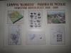 hasdeu-biserica-sfantul-nicolae-29-16-03-2014